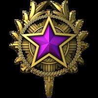Service medal 2020 lvl5 large