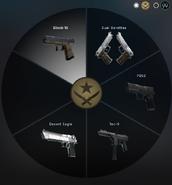 Пистолеты Т