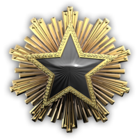 Csgo-service medal 2016 7-1-