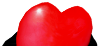 Heartbomb viewmodel idle