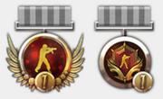 Season 1 medals.png