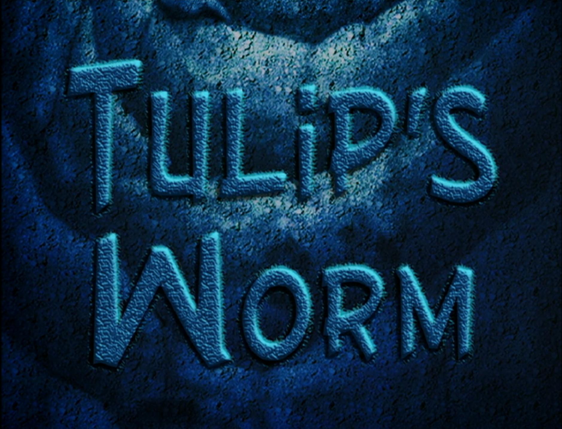 Tulip's Worm