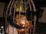 The Inhospitable Pineapple