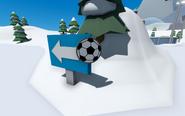 FootballBallPinLocation