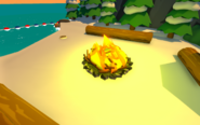 Sensei's Fire Scavenger Hunt Object 6 Location