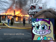 Disaster Ember