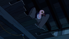 Vulture's Nest (206).png