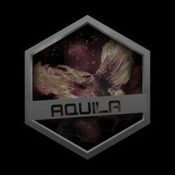 Aquila family