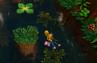Coco drowns
