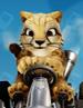 Pura cheetah