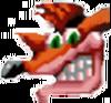 Crash Bandicoot CTR Icon