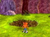 CrashTwinsanity Level1 JungleBungle BugRun 02