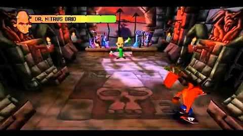 Crash Bandicoot (1996) Bosses N