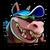 CTRNF-Beach Dingodile Icon