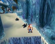 Sliding Penquins
