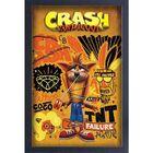 Crash Coco and Aku-Aku Art Print from GameStop