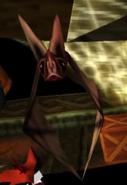 Bat close-up