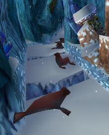 Seals Snow Go.jpg
