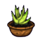 Potted Kibweed.png