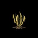 Sawgrass (0).png