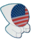 Olympic Committee (USA)