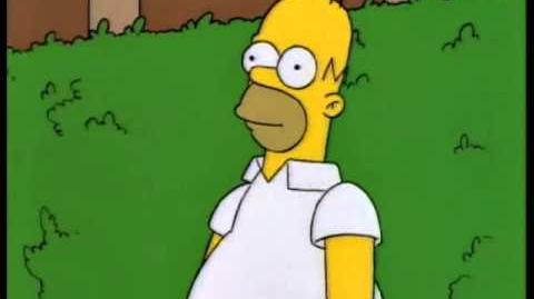 Homer disappears into bushes-0