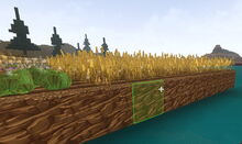 Creativerse floating crops58.jpg
