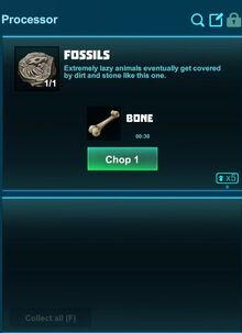 Creativerse processing fossils to bones 2018-10-20 12-18-11-97.jpg