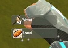 Creativerse unlock R22 Wheat Bread300.jpg
