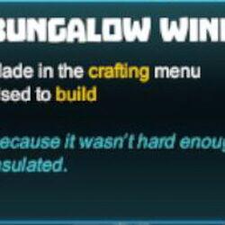 Bungalow Window