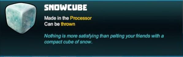 Snowcube