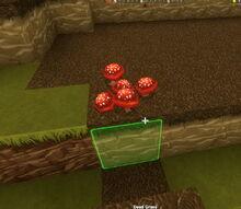 Creativerse red mushroom dead grass 2015 33386.jpg