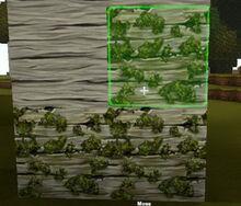 Creativerse Moss on Ashenwood01.jpg