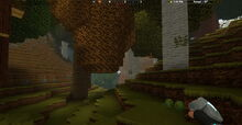 Creativerse Forest with lettuce1991.jpg