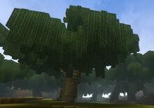 Creativerse Weepwood Swamp1191.jpg