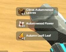 Creativerse Autumn Leafi Pet harvest3737.jpg