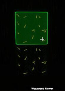 Creativerse Weepwood Flower glowing001.jpg