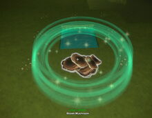 Creativerse brown mushroom fertilized growing from spores 2019-02-01 01-47-01-25.jpg