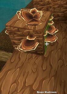 Creativerse Brown Mushroom4004.jpg