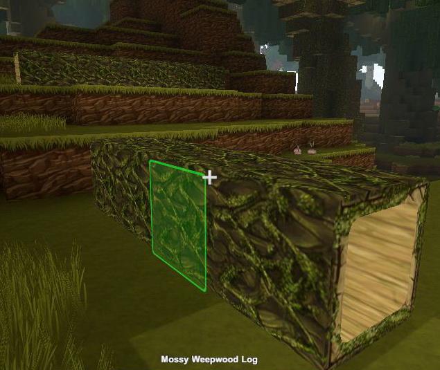Mossy Weepwood Log