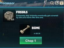 Creativerse fossils to bones 2017-07-05 12-33-21-01.jpg