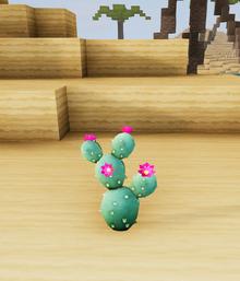 Prickly pal dunes.png