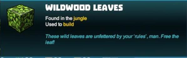Wildwood Leaves