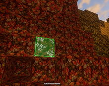 Creativerse autumnwood flower 2018-06-19 18-07-50-27.jpg