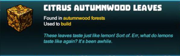 Citrus Autumnwood Leaves