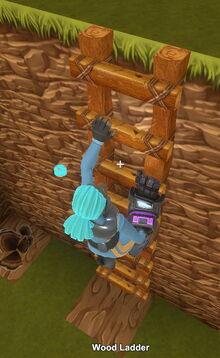 Creativerse wood ladder 2019-02-03 04-08-05-93 climbing images.jpg