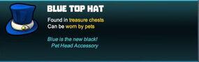 Creativerse pet hat 2018-01-12 19-06-47-25.jpg
