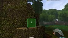 Creativerse Weepwood swamp383.jpg