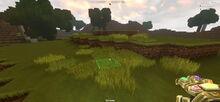 Creativerse tallgrass grassland 2018-07-02 17-41-40-12.jpg