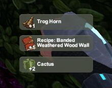 Creativerse Banded Weathered Wood Wall Trog pet harvest5858.jpg